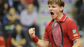 David Goffin Davis Cup