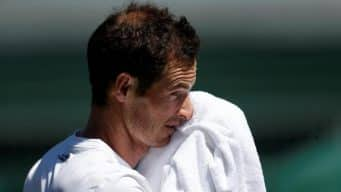 D Medvedev v A Murray Free Tips, Betting Odds, Live Stream, Head to Head (H2H) & Tennis Picks | ATP Brisbane Match Preview | 2nd January 2019